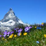 Bild von einem Berg als Anspielung auf Titel ALPEN-Methode Zeitmanagement gegen Stress